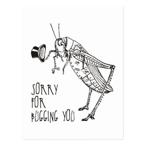Sorry for bugging: Vintage grasshopper / cricket Postcards