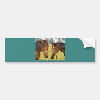 Sorry For Your Loss, Sympathy Two Sad Horses Bumper Sticker