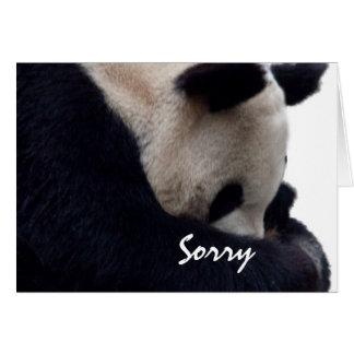 Sorry Panda Note Card