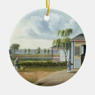 Sorting tea (w/c on paper) christmas ornament