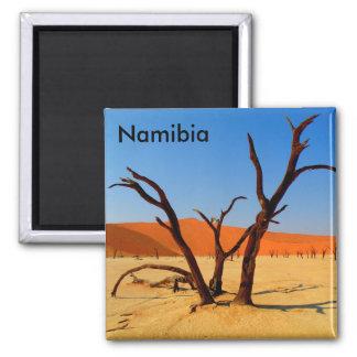 Sossusvlei Namibia magnet