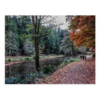 Soudley Ponds Postcard