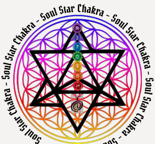 Star Soul Clothing - Apparel, Shoes & More   Zazzle UK