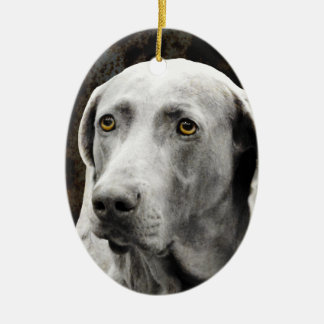 Soulful Eyes of the Weimaraner Christmas Ornament