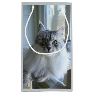 Soulful Silver Siberian Cat Gift Bag
