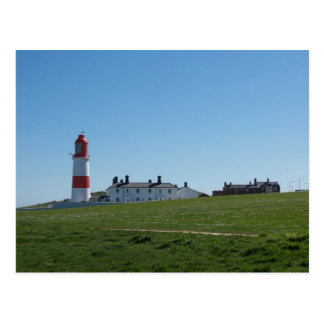 Souter Lighthouse summer Postcard
