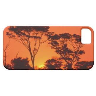 South Africa.  African sunset. iPhone 5 Cases