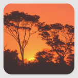 South Africa.  African sunset. Square Sticker