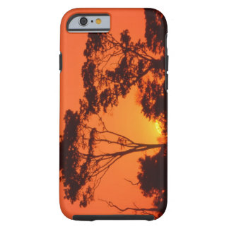 South Africa.  African sunset. Tough iPhone 6 Case