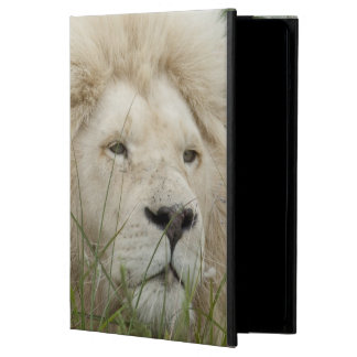 South Africa, East London, Inkwenkwezi Private Case For iPad Air