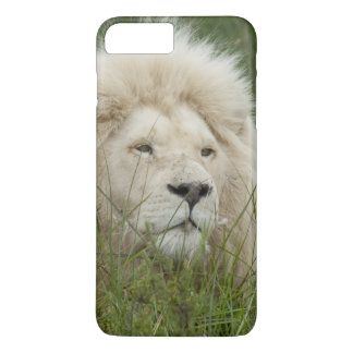 South Africa, East London, Inkwenkwezi Private iPhone 8 Plus/7 Plus Case