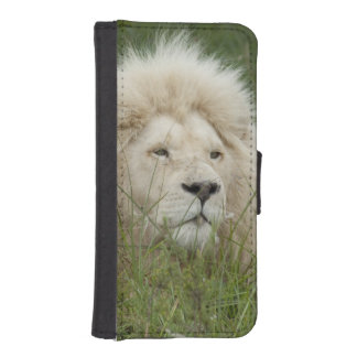 South Africa, East London, Inkwenkwezi Private iPhone SE/5/5s Wallet Case