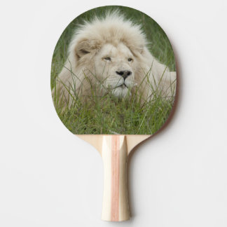 South Africa, East London, Inkwenkwezi Private Ping Pong Paddle