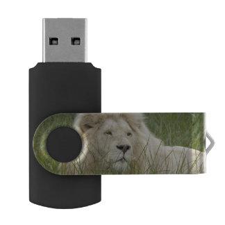South Africa, East London, Inkwenkwezi Private Swivel USB 2.0 Flash Drive