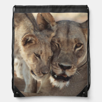 South Africa, Kalahari Gemsbok National Park 1 Drawstring Backpacks