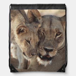 South Africa, Kalahari Gemsbok National Park 1 Drawstring Bag