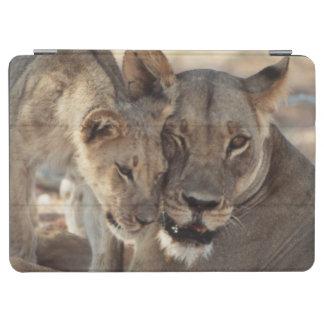 South Africa, Kalahari Gemsbok National Park 1 iPad Air Cover