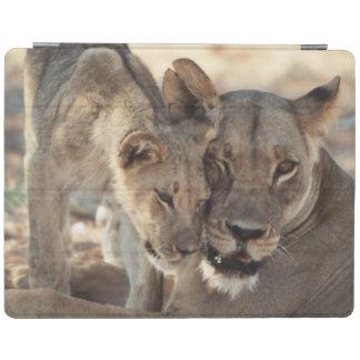 South Africa, Kalahari Gemsbok National Park 1 iPad Cover