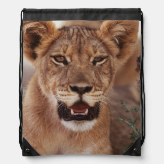 South Africa, Kalahari Gemsbok National Park 3 Drawstring Bag
