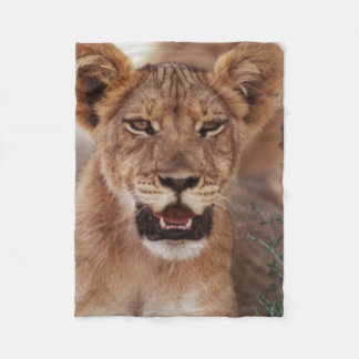 South Africa, Kalahari Gemsbok National Park 3 Fleece Blanket