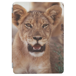 South Africa, Kalahari Gemsbok National Park 3 iPad Air Cover