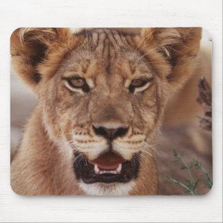 South Africa, Kalahari Gemsbok National Park 3 Mouse Mat