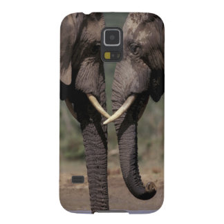 South Africa, Kalahari-Gemsbok NP, Gemsbok at Cases For Galaxy S5