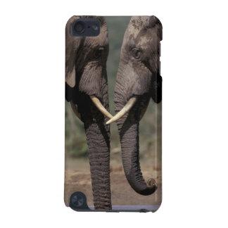 South Africa, Kalahari-Gemsbok NP, Gemsbok at iPod Touch 5G Cover