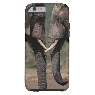 South Africa, Kalahari-Gemsbok NP, Gemsbok at Tough iPhone 6 Case