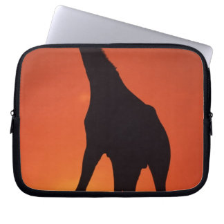 South Africa, Kruger NP.  Giraffe (Giraffa Laptop Sleeve