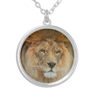South Africa Majestic Lion Close up Silver Plated Necklace