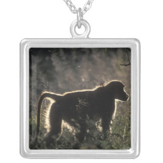 South Africa, Pilanesburg Game Reserve, Chacma Silver Plated Necklace