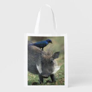 South Africa, Pilanesburg GR, Warthog Reusable Grocery Bag