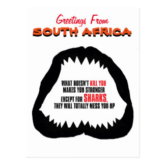 South Africa shark postcard