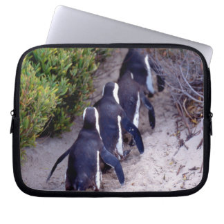 South Africa, Simons Town. Follow the leader. Laptop Sleeve