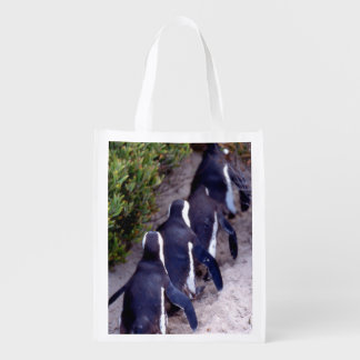 South Africa, Simons Town. Follow the leader. Reusable Grocery Bag