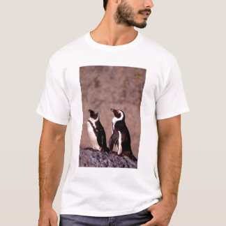 South Africa, Simons Town. Jackass Penguins 2 T-Shirt
