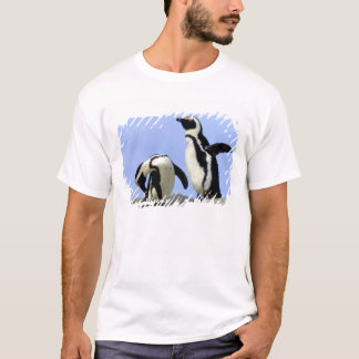 South Africa, Simons Town. Jackass Penguins T-Shirt