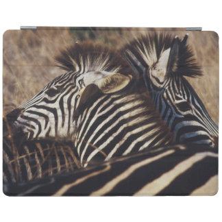 South Africa, View of Zebra (Equus Burchellii) iPad Cover