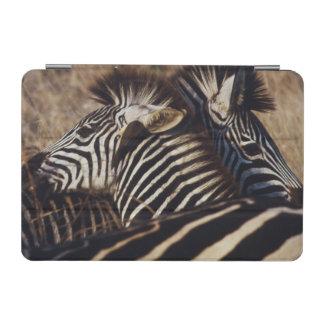South Africa, View of Zebra (Equus Burchellii) iPad Mini Cover