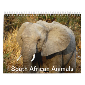 South African Animals Calendar