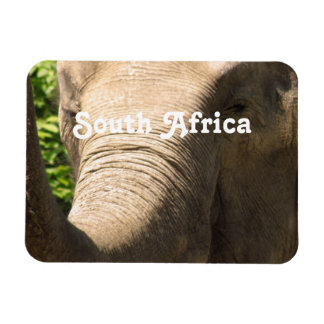 South African Elephant Flexible Magnet