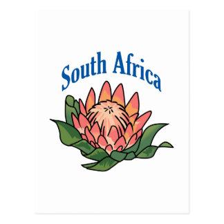South African Flower Postcard