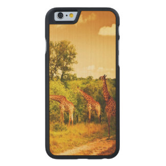 South African giraffes Carved® Maple iPhone 6 Slim Case