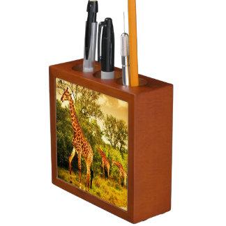 South African giraffes Desk Organiser