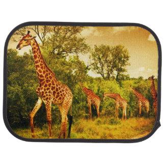 South African giraffes Floor Mat