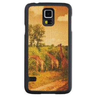 South African giraffes Maple Galaxy S5 Slim Case