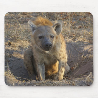 South African Hyena Mouse Mat