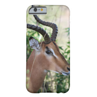 South African Impala profile Barely There iPhone 6 Case