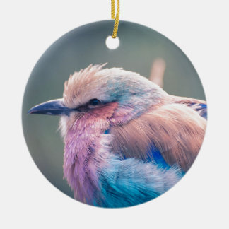 South African Lilac-Breasted Roller Round Ceramic Decoration